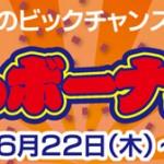 2017 夏のボーナスセール 開催中!!